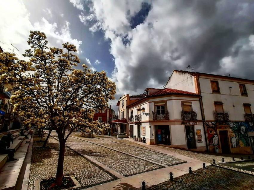 Foto: Jerónimo Belo Jorge